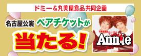 ドミー&丸美屋食品共同企画 アニーチケットプレゼントキャンペーン開催!